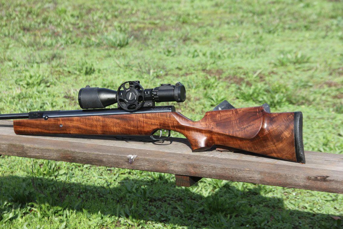 lets see those Fraulein's !!!(german pic thread) - Airguns